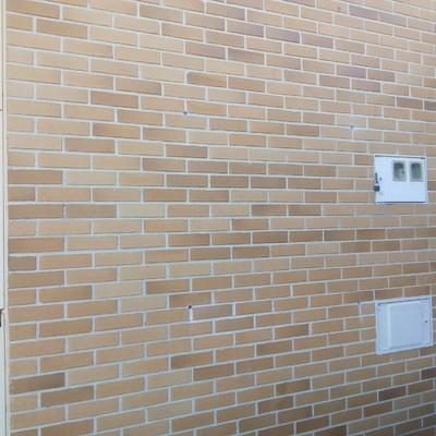 Vista de fachada perforada antes de insuflado en ladrillo.