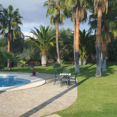 Mantenimiento piscina y jardines