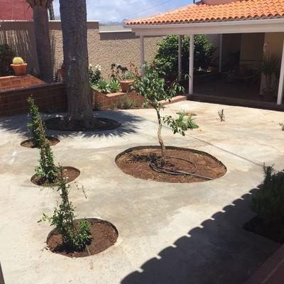 Diseño de jardín para vivienda unifamiliar