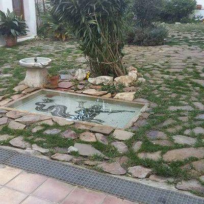 Mosaico para patios