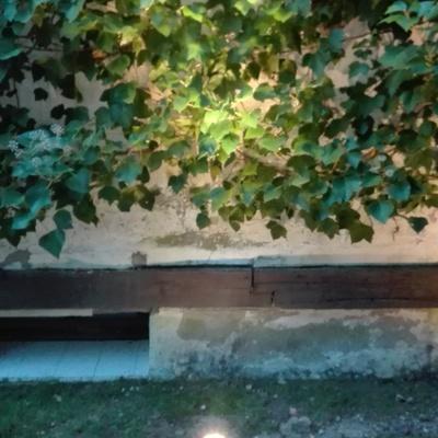 Iluminación led en jardín.