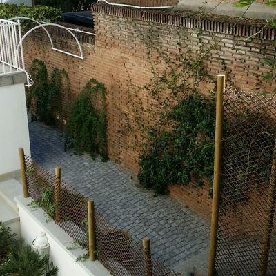 Jardín particular con trepadoras