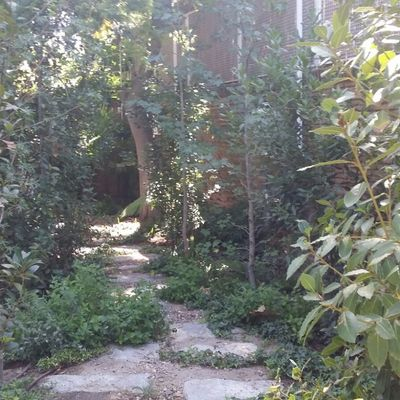 Mantenimiento en jardín