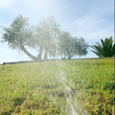 Diseño de un jardín con riego automático
