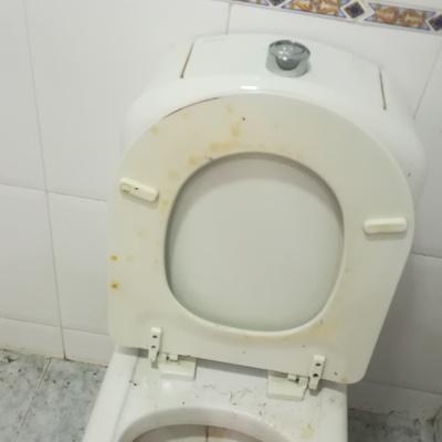 WC Antes de limpiarlo