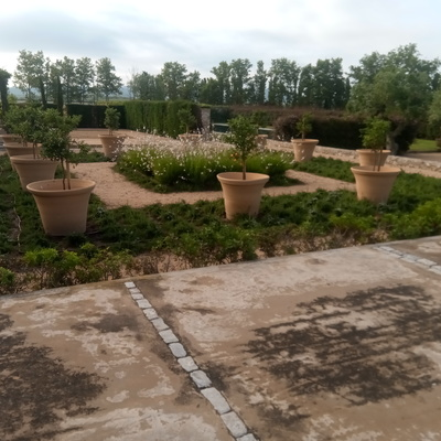 jardín monocromático