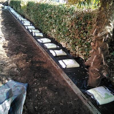 Preparación firme de jardineras.
