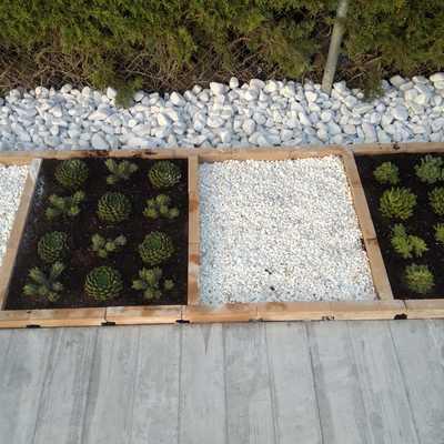 Detalle jardinería en terraza perimetral a piscina