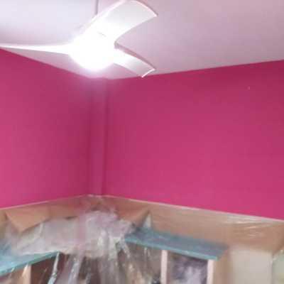Liso en rosa habitación