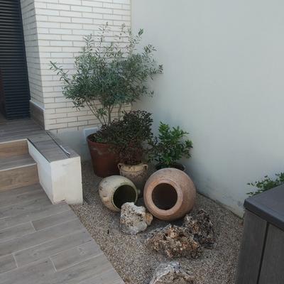 Detalle jardín