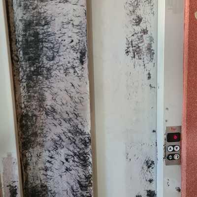 Arreglos de ascensor y pintura