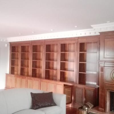 Lacado de libreria salon