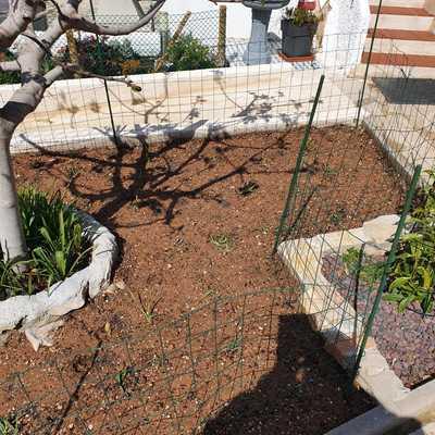 Extender tierra y plantar grama