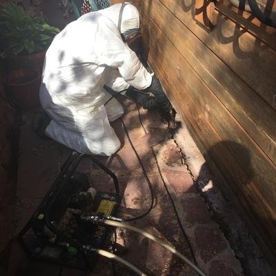 Tratamiento químico contra termitas