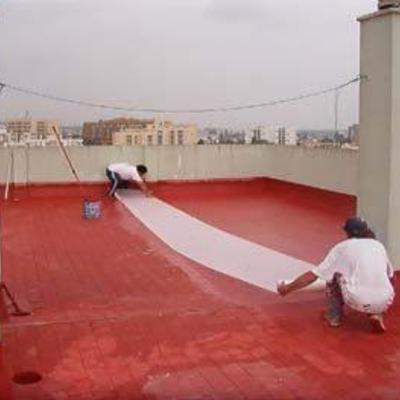 Pintura terraza no transitable