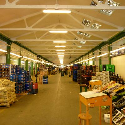 Instalacion de Iluminacion en Industria Sector Alimentario  Merca Vallès
