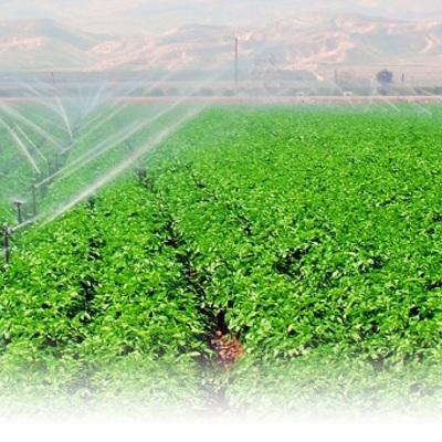 Instalación de sistemas de riego y obras en fincas agrícolas