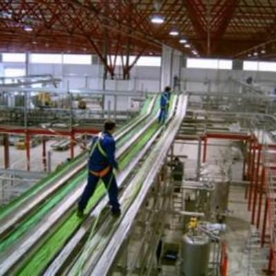 tendido de cables en un gran almacen y fábrica