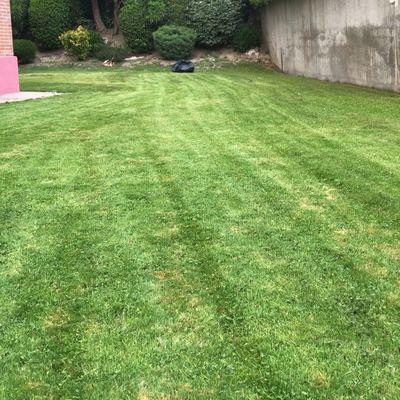 Mantenimiento Jardín Comunidad