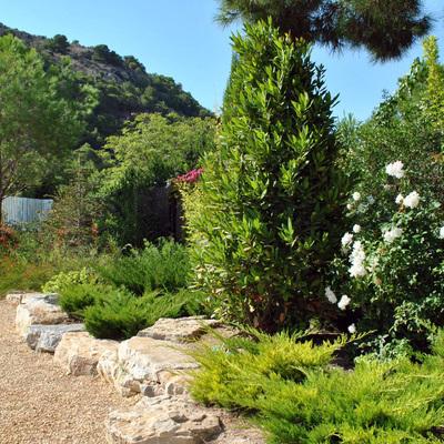 Jardín mediterraneo en Alicante