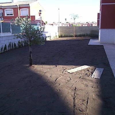 jardin recien terminado