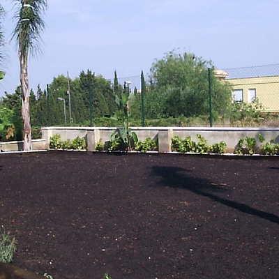 jardin sembrado.
