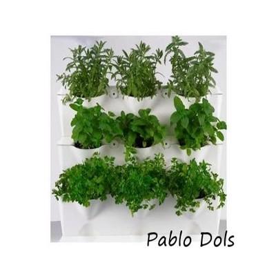 JARDIN VERTICAL, plantas aromatícas.