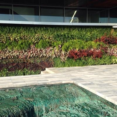 Jardín vertical edificio corporativo