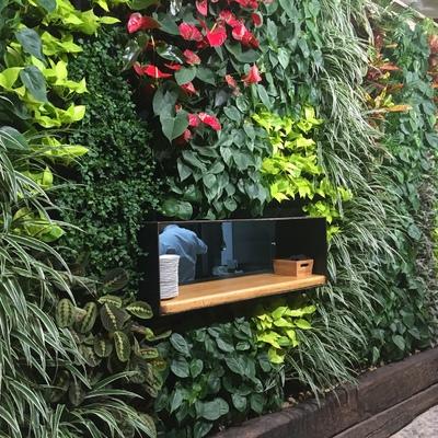 Jardín vertical Bar Pelayo