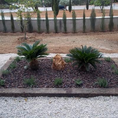 jardinera zen
