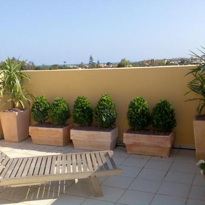 Presupuesto cerrar terraza atico online habitissimo - Cerrar terraza atico ...