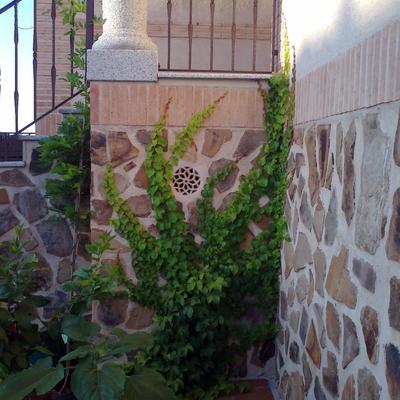 Jardinería Oubiña y Pecci diseño y floristería en Toledo