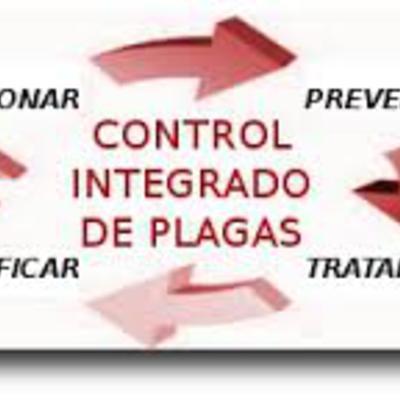 La lucha integrada en el manejo de plagas
