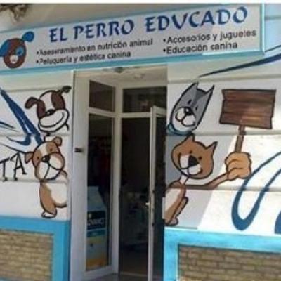 Licencia Actividad Valencia