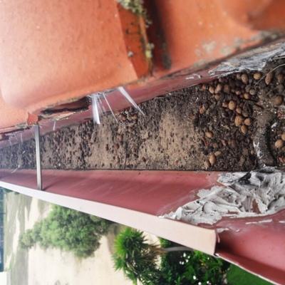 Limpieza de canales con seguridad 2