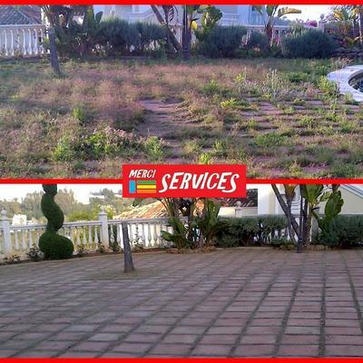 Limpieza puntual de jardin