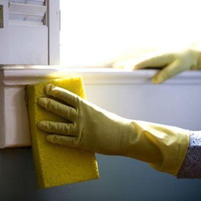 Limpieza en Establecimientos