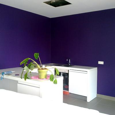 liso cocina c/violeta acrilico
