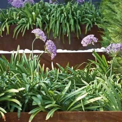 talud solucionado con formación jardineras en corten.