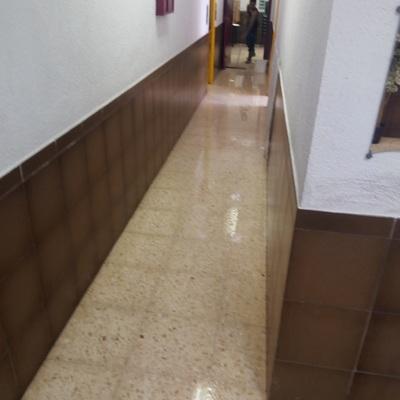 Lavado suelos