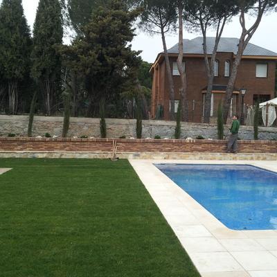 Mantenimiento de piscina y jardines