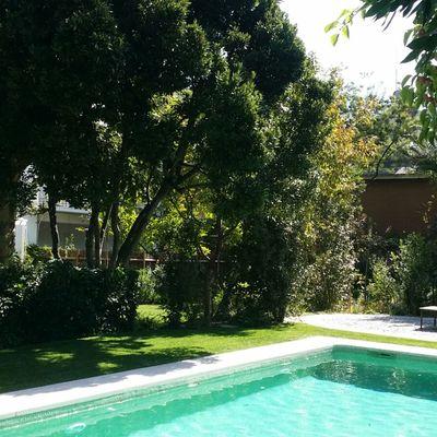 Mantenimiento en jardín particular 2