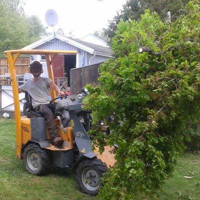 Maquinaria para transladar ramas