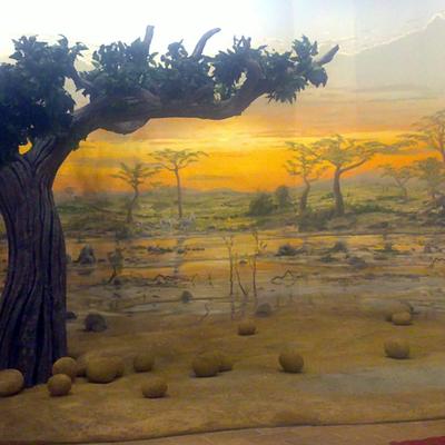 Mural africano