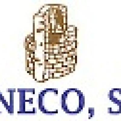 Nuestro emblema desde 1991