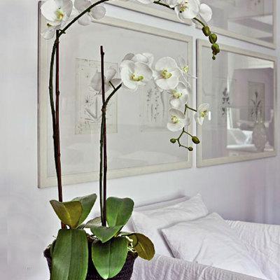 Orquídeas Artificiales