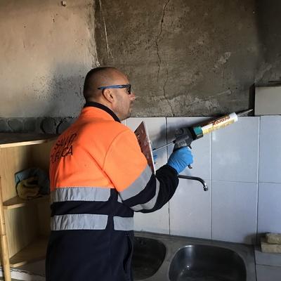 Aplicación de gel con insecticida para cucarachas