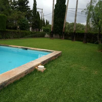 Mantenimiento jardines y piscina