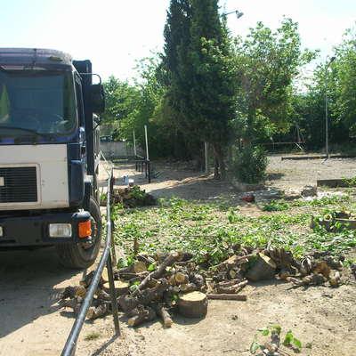 Deforestación en campo de fútbol de Pallejà