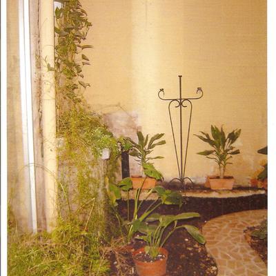 pasillo de jardin